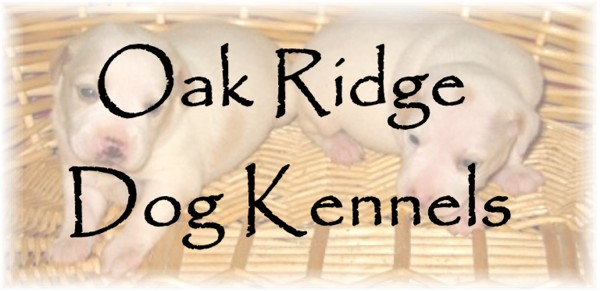 Oak Ridge Dog Kennels Mississippi